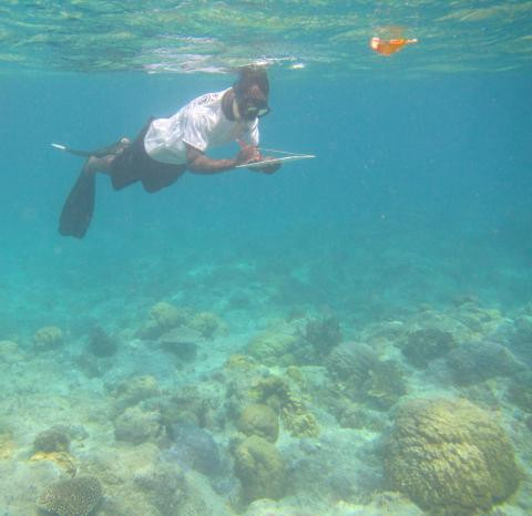 Community marine resources monitoring in North Efate, Vanuatu (©SPC)